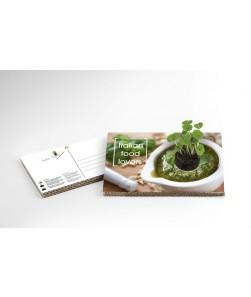 GREEN CARD- cartolina ecologica vivente
